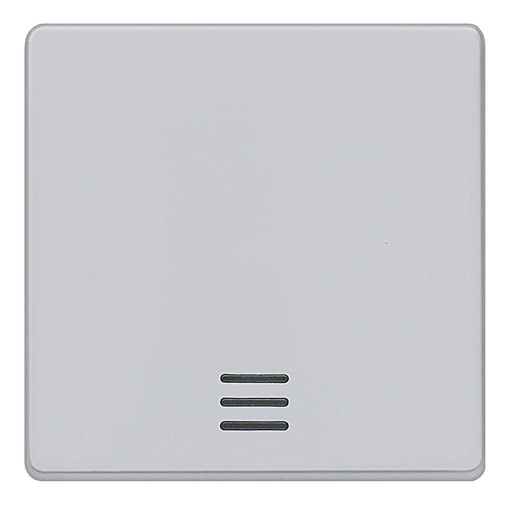 Tecla interruptor con visor Siemens Delta aluminio metalizado