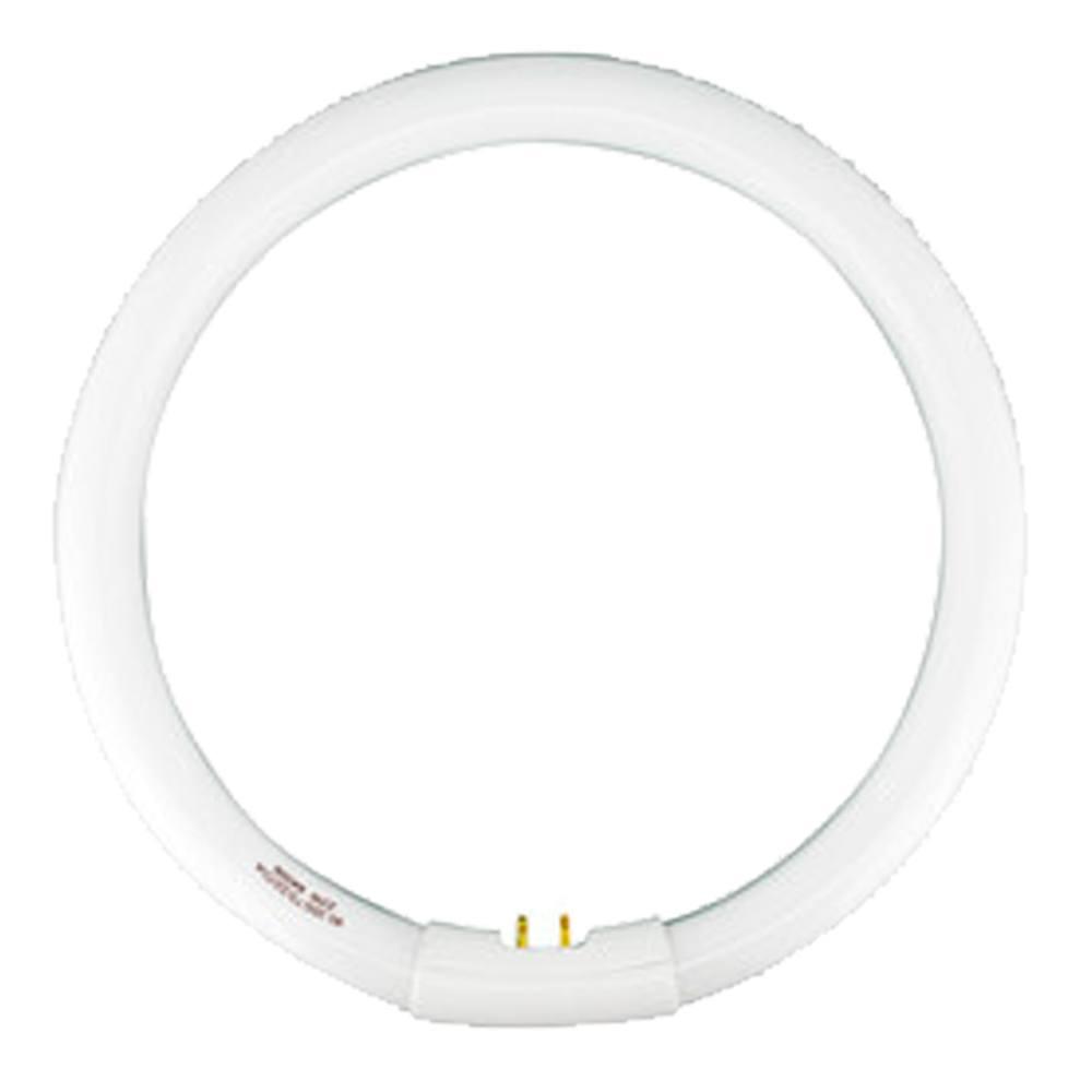 Tubo Fluorescente Circular